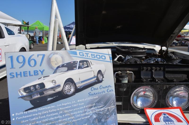 Mustang-DSC_5354