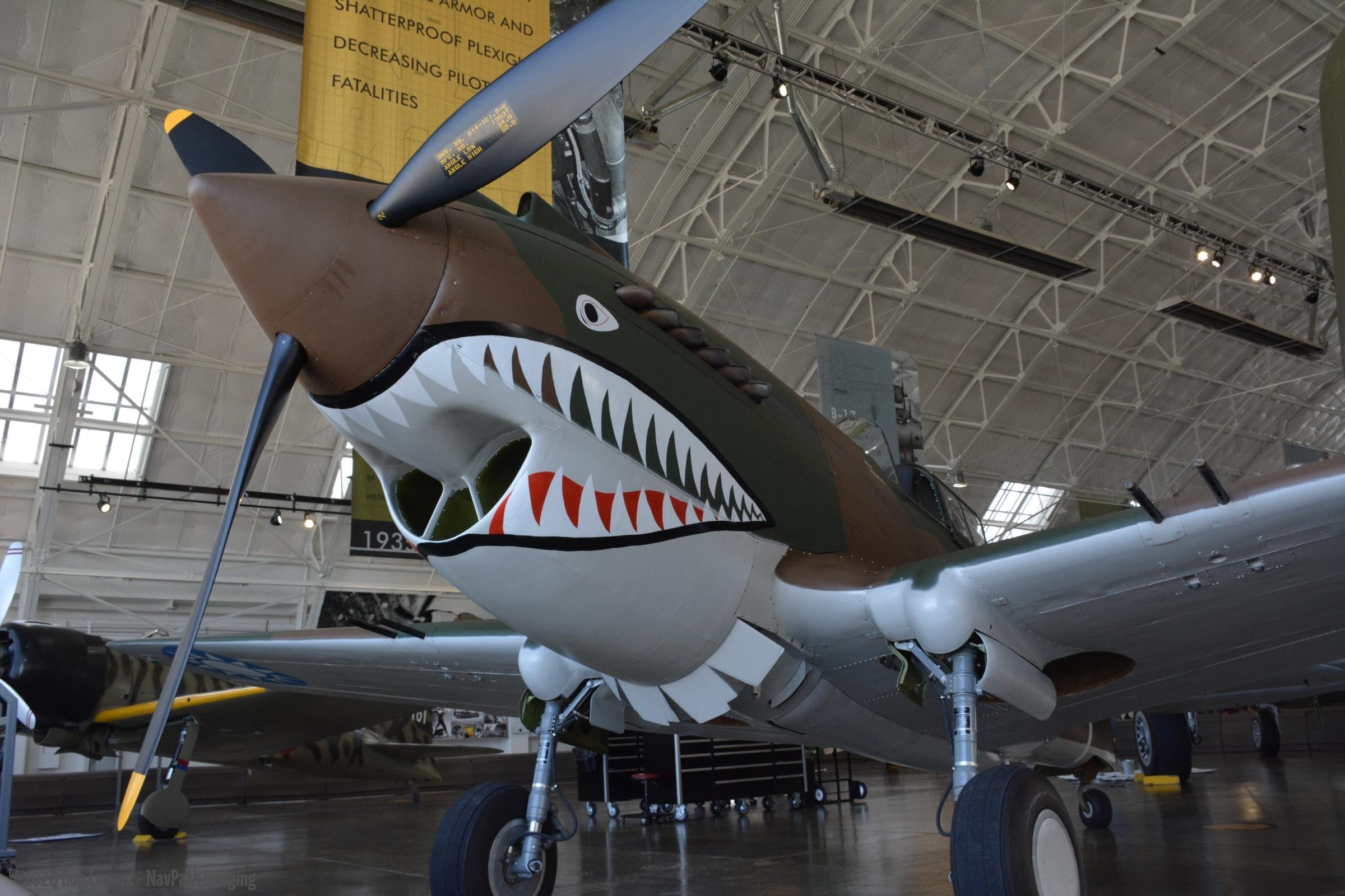 Curtis P-40 DSC_5249